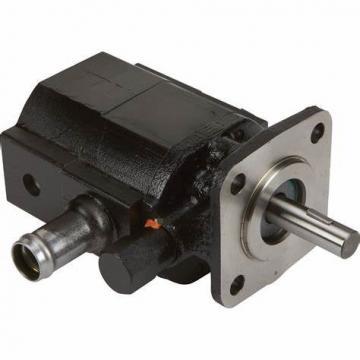 CBTs-F306;CBTs-F308;CBTs-F310;CBTs-F312;CBTs-F314;CBTs-F316 Hydraulic Gear Pump